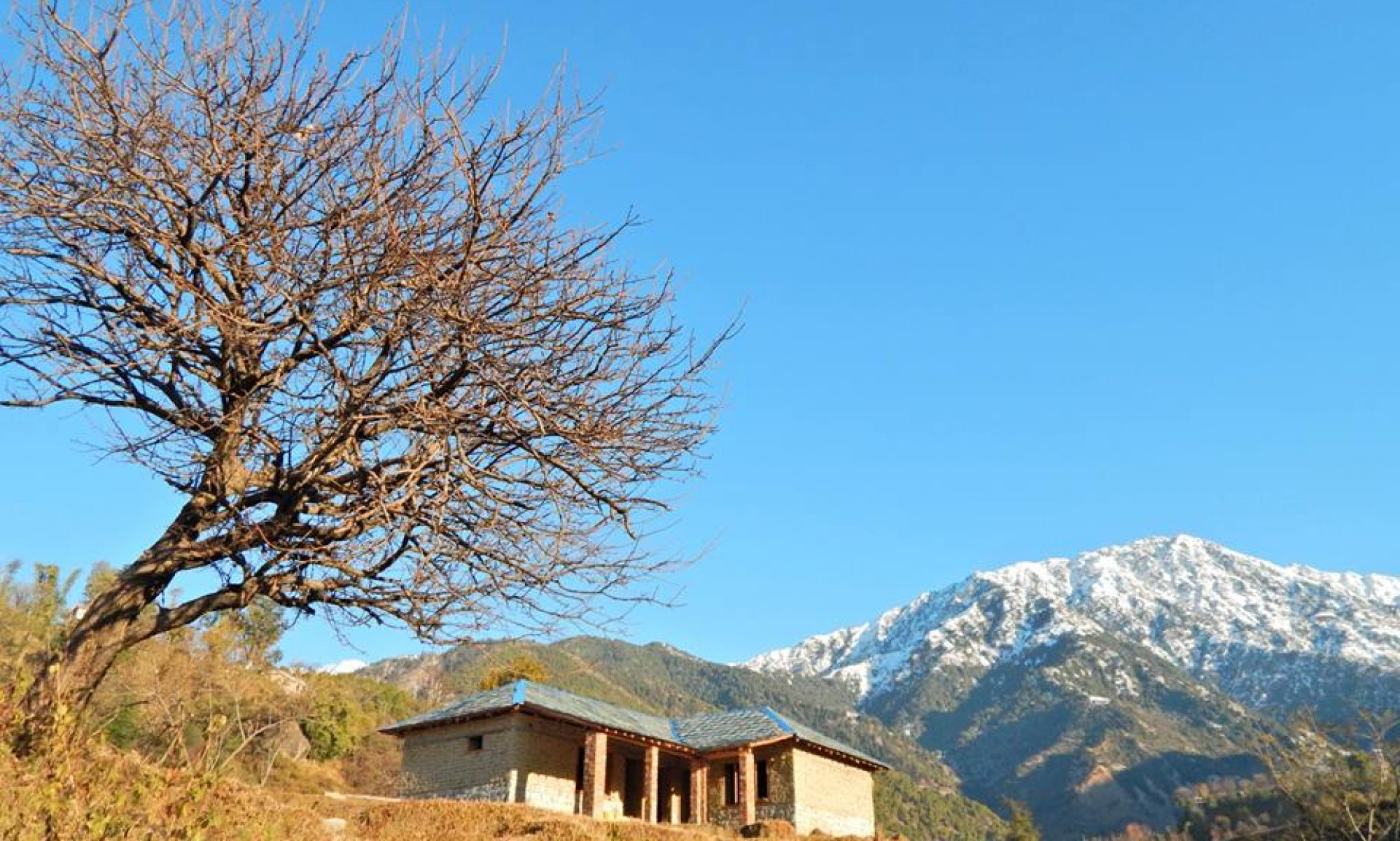 The Earth House, Palampur